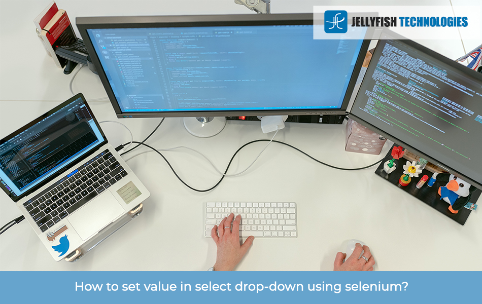 How to set value in select drop-down using selenium?