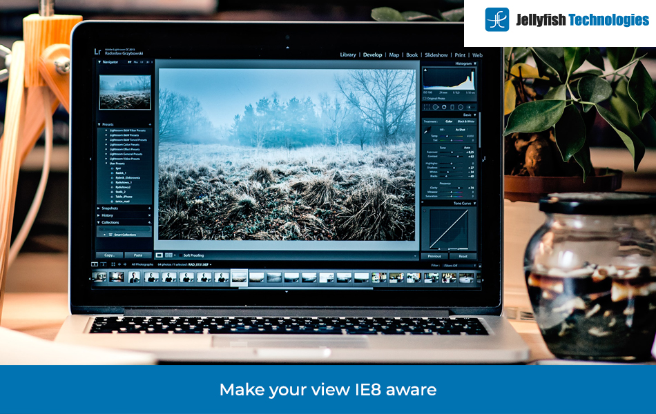 Make your view IE8 aware
