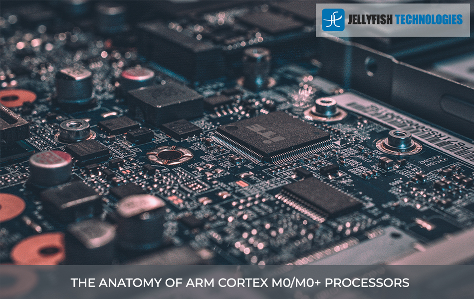 THE ANATOMY OF ARM CORTEX M0/M0+ PROCESSORS