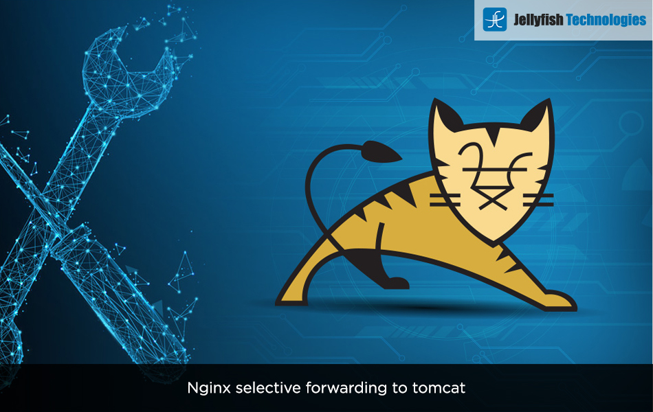 Nginx selective forwarding to tomcat